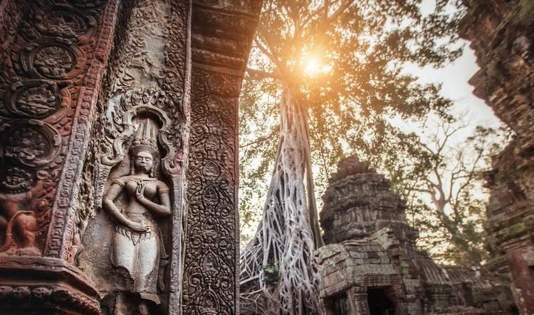 Ta Prohm in Cambodia